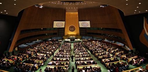 U.N. – Who is the guardian of the world (duties and actions)