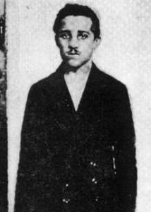 Gavrilo Princip, the bosnian serb nationalist who assassinated Archduke Franz Ferdinand